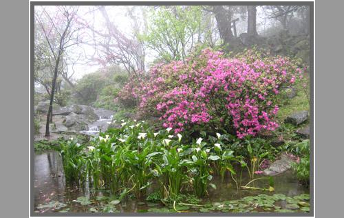 Taipei_park