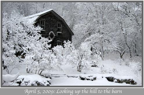4-5-09_Spring_snow