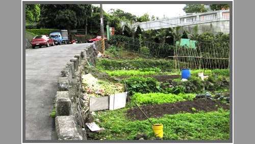 Allotment2 Taipei